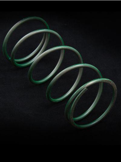 Wastegate Spring - Large (Green)